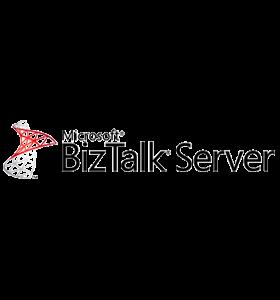 Microsoft BizTalk RFID